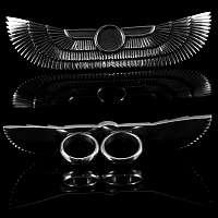 Zweifingerring als Flügel aus 935er Silber