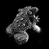 Kröte Schmuck Ring Silber massiv 42,5 Gramm!!!
